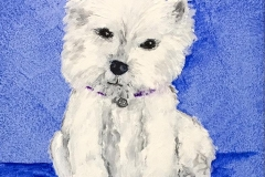 Carly-the-Westie