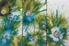 Peacock-Sea-Urchins