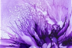 Purple-Passion-1