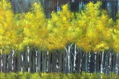 Yellow-Aspens